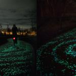 Percorso Luminescente Per Bicicletta Solare In Olanda Ispirato Alla Notte Stellata Di Van Gogh