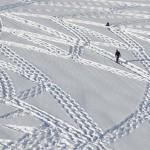 Sembra Semplicemente Un Ragazzo MAtto Che Cammina Nella Neve. Poi basta Ingrandire e… Wow